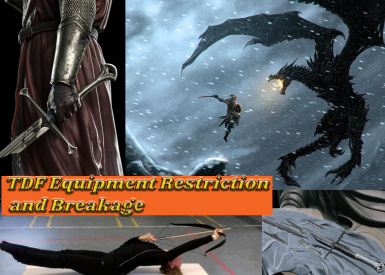 TDF Equipment Restriction and Breakage