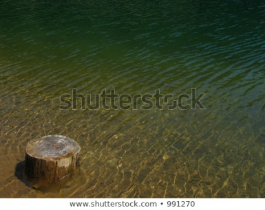 My source image I used for inspiration for green water