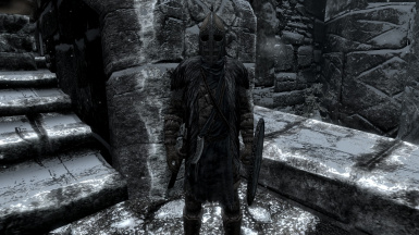 Immersive Guard Armor - Windhelm (SSE)