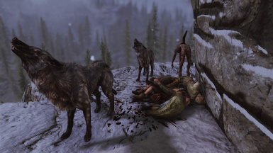 Bandit Pets.  They are HUNGRY!!