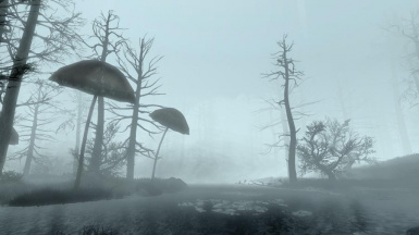 Foggy Morthal and Swamp SE