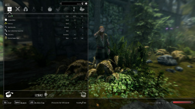 Follower Mod at Skyrim Special Edition Nexus - Mods and