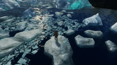 Standing in the middle of the experimental ice floe