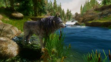 Wolves of Cyrodiil - Mihail Monsters and Animals (SSE PORT)