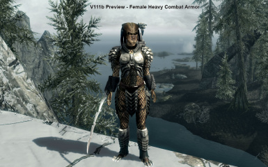 Female Heavy Combat Armor