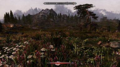 Vurt's Grass and Plants with EVT and Obsidian NVT, Mystrious Dawns Landscape, Arindel's Darker LOD