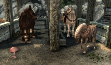 Solitude Stables