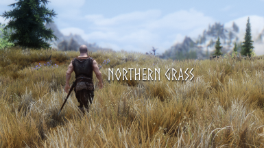 Northern Grass SE