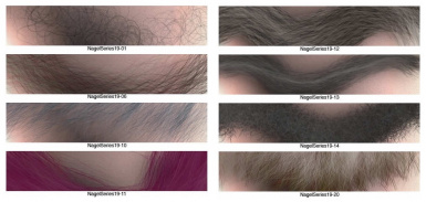 Dave Nagel Photoshop and Illustrator Brushes Collection - hair - skin - fur - cloth - stone - etc.