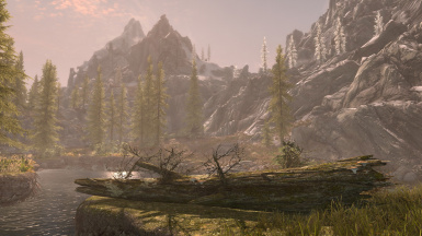 Skyrim SE graphic DoF and LOD effects