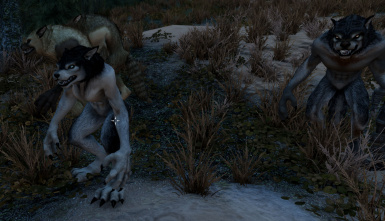 Thicker Werewolves (Male and Female Werewolf Mesh Replacer)