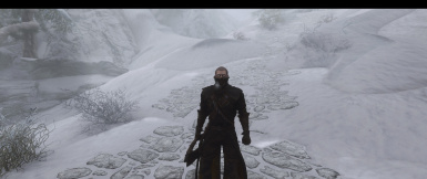 True Skyrim - A Mod list to make Skyrim as cold and harsh as its meant to be.