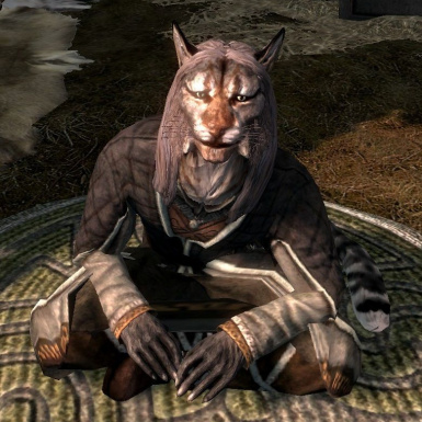 Khajiit Merchants Buy Stolen Items SE