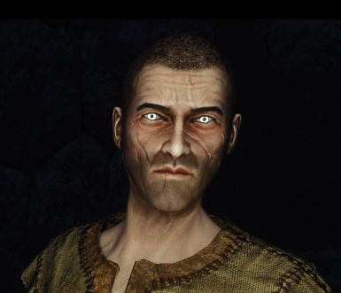 The Witch Hunter - Race and Racemenu Preset
