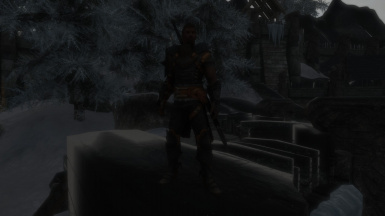Dragon Age 2 Champion Armor