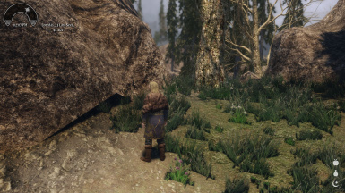 Skyrim Landscape and Water Fixes