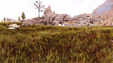 Grass Addon for Veydosebrom Verdant and others at Skyrim Special