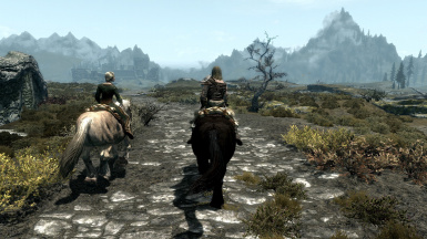 Riding side by side