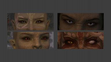 Lore Friendly Elf Eyes