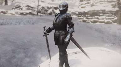 15th Milanese Styled Armor