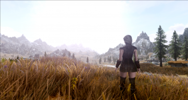 Real Lighting ENB ReShade for Vivid Weathers SE