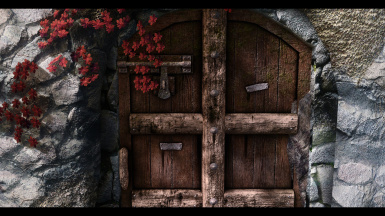 Fortified and Animated Fort Doors SE
