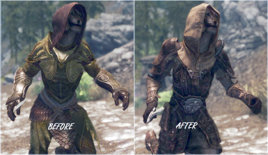 Roadside Thief Simple Armor SSE