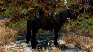Nightmere - Shadowmere Mesh Replacer (Without Glowing Eyes - Swift Steeds)
