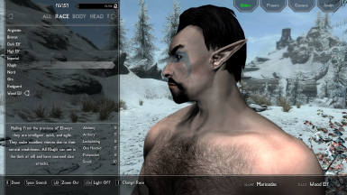 Etheral Elven Overhaul - Fixed beards and Male faces