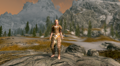 15 Scaled Armor female front