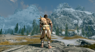 18 Scaled Horn Armor male back