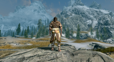 14 Scaled Armor male back