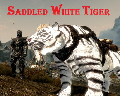 Saddled White Tiger