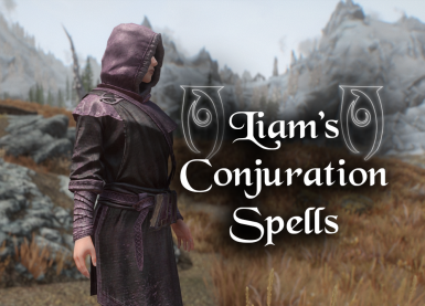 Liam's Conjuration Spells