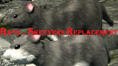 Rats for Skeevers Replacement SE