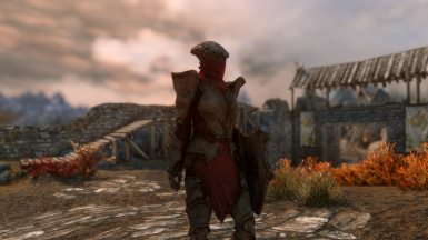 Chitin Heavy Armor Female
