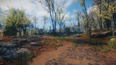 Picturesque - graphical overhaul - weathers mod plus ENB