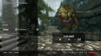 Armor Skill Requirement
