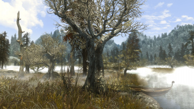 PhoenixVivid ENB ONLY Version Climates of Tamriel  10