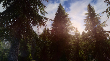 PhoenixVivid ENB Full Version 1 Dolomite Weathers  2