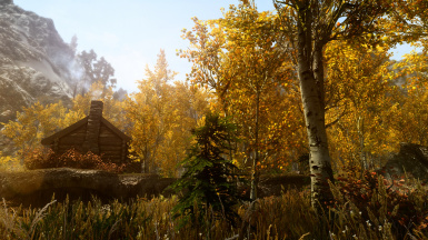 PhoenixVivid ENB Reshade Climates of Tamriel   3