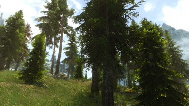 PhoenixVivid ENB ONLY Version Climates of Tamriel  2