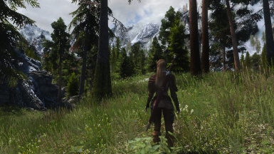 PhoenixVivid ENB ONLY Dolomite WEathers   4