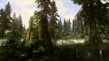 PhoenixVivid ENB Reshade Climates of Tamriel   5