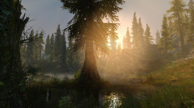PhoenixVivid ENB ONLY Version Climates of Tamriel  6