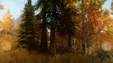 PhoenixVivid ENB   Climates of Tamriel  9