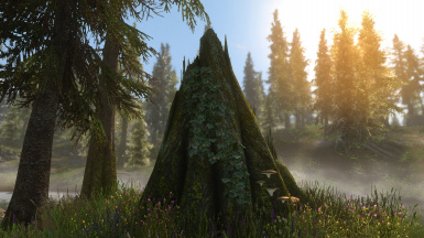 PhoenixVivid ENB ONLY Version Climates of Tamriel  8