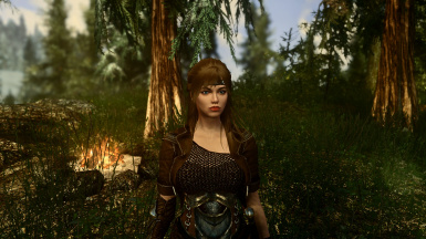 PhoenixVivid ENB Reshade Climates of Tamriel   4