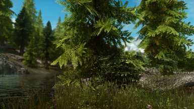 PhoenixVivid ENB Reshade NAT Version   4