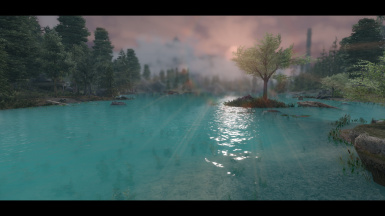 PhoenixVivid ENB for NAT (5)
